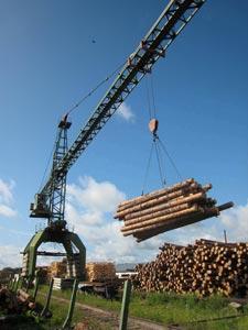 ДЕРЕВООБРАБОТКА|Технология деревообработки