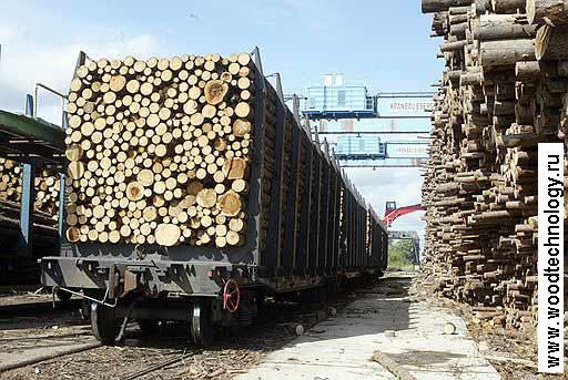 В России утвержден закон по экспорту леса