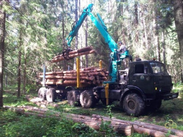 lesovozmanipulator