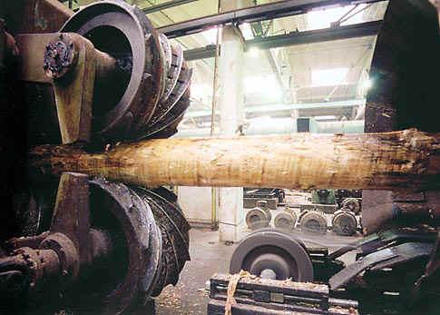 Особые моменты в деятельности инженера по охране труда деревообрабатывающего предприятия
