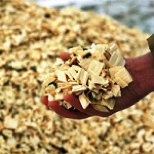 Выработка щепы в условиях нижних складов и лесосек часть 1