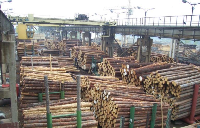 Склады сырья лесопильного производства