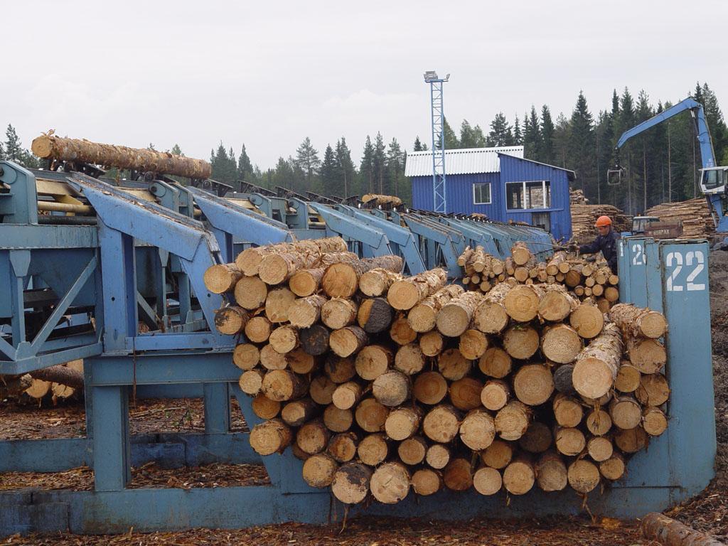 Основные сведения о сортировке круглых лесоматериалов