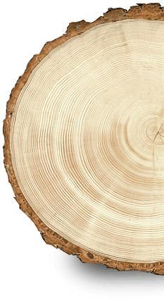Усушка древесины и ее плотность